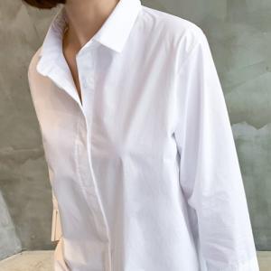 シャツブラウス レディース 40代 50代 60代 ファッション おしゃれ 女性 上品  黒  白 プリーツ 長さで 無地 冬 ミセス|alice-style