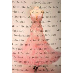 社交ダンス衣装 社交ダンスドレス モダンドレス デモ用ドレス セミオーダードレス ラテンドレス ワンピース WB3923|alive-life