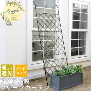 アイアン製グリーンカーテン アーガイル IF-GC011BLK|alla-moda