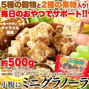 商品管理番号 SM00010374   生産地 日本   ■品名:ミニグラノーラ(ピロ) ■名称:菓...