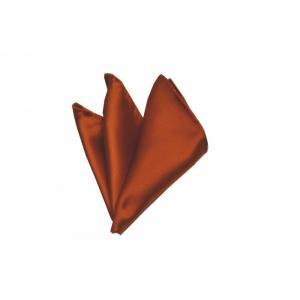 無地(シルクサテン)/テラコッタ(明るいレンガ色の様なオレンジ)サテン・ポケットチーフ(チーフ30cm) / PC-AP014|allety-y