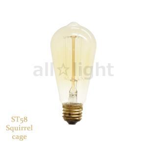 ☆★ エジソンバルブ(エジソン電球) ナス球形 ST58 E26 110V 40W Squirrel cage ST58 E26 110V 40W SC|alllight