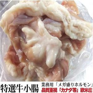 【業務用】品質重視 欧米産「カナダ・メキシコ」 牛小腸 ホルモン メガ盛り約6.8kg