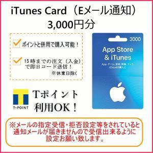 iTunes Card アイチューンズカード 3,000円分 [Eメール通知専用]  Apple プ...