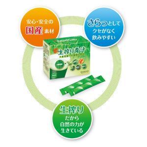 国産素材 生搾り青汁 大麦若葉+6種類の野菜 90g (3g×スティック30本)|alnet-shop|02