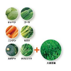 国産素材 生搾り青汁 大麦若葉+6種類の野菜 90g (3g×スティック30本)|alnet-shop|04