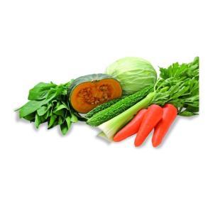 国産素材 生搾り青汁 大麦若葉+6種類の野菜 90g (3g×スティック30本)|alnet-shop|05