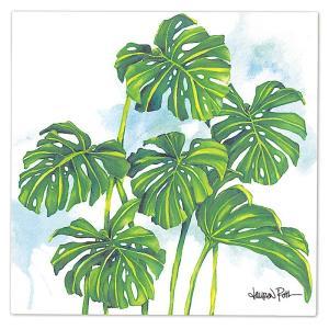 """ローレンロス キャンバス アート """"MONSTERA GROVE"""" Lauren Roth Design in Hawaii 25x25cm alohahiyori"""