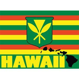 DECAL Hawaii ハワイ ステッカー  Kanaka Maoli Hawaii カナカ マオリ|alohahiyori
