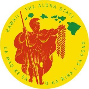 DECAL Hawaii ハワイ ステッカー 防水 車 スーツケース Hawaii The Aloha State|alohahiyori