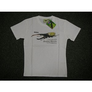 「ヘラクレス」 ジュニア プリントTシャツ ホワイト alor21