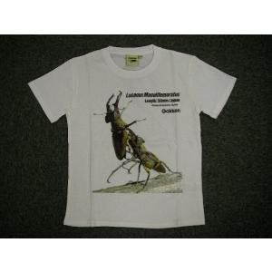 「クワガタ」 ジュニア プリントTシャツ ホワイト alor21