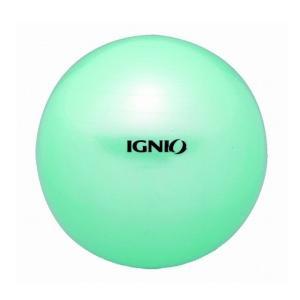 イグニオ IGNIO バランストレーニング フィットネスボー...
