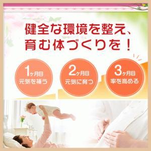 ミトコンドリア サプリ サプリメント 30日分 妊活 サプリメント 女性/妊活/ママ活/不妊|alphay3939|09