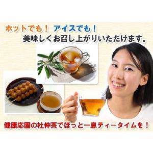 杜仲茶 国産 日本の杜仲茶(3g×60包)[y]|als|02