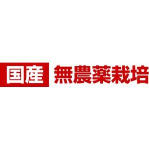 杜仲茶 国産 日本の杜仲茶(3g×60包)[y]|als|04