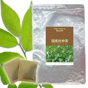 杜仲茶 国産 日本の杜仲茶(3g×30包)【DM便送料無料】