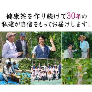 国産メグスリノ木茶 30包【DM便送料無料】 als 03