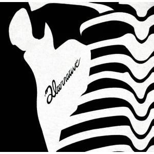 ホネ骨/スケルトン/ガイコツ/スカル/ドクロ/Tシャツ/メンズ/レディース|alternativeclothing|04
