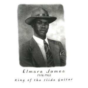 エルモア・ジェームス/Elmore James/ブルース/Tシャツ/メンズ|alternativeclothing|02