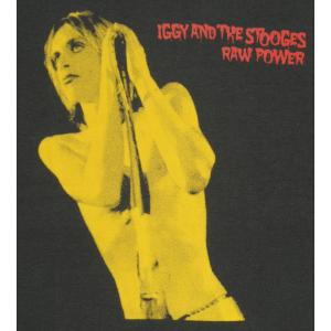 Raw Power/イギー・ポップ/IGGY POP/チャコール/ロックTシャツ/バンドTシャツ/メンズ/レディース/半袖|alternativeclothing|02