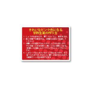 甘酢生姜の作り方 シール 160枚入り vegetable3341|alucia