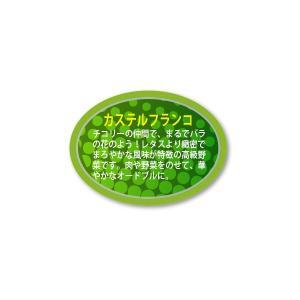 カステルフランコ シール 450枚入り vegetable3346|alucia