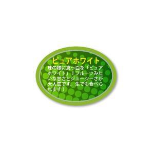 ピュアホワイト シール 450枚入り vegetable3347|alucia