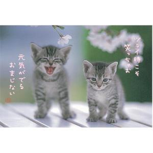ACTIVE COOPRATION/ アクティブコーポレーションポストカード〜桜2匹|amac-store