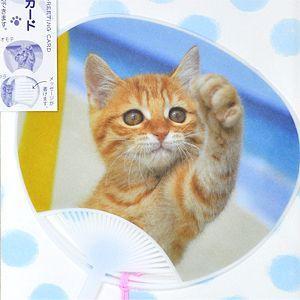 ACTIVE COOPRATION アクティブコーポレーション うちわカード 子猫|amac-store