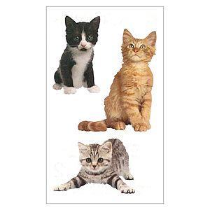 MRS.GROSSMAN'S/ミセスグロスマン Adorable Kittens カワイイ子猫|amac-store