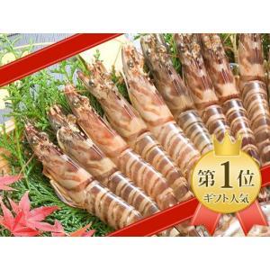 【当店人気 No.1】天草産車海老350g|amakusakaisen-amarei