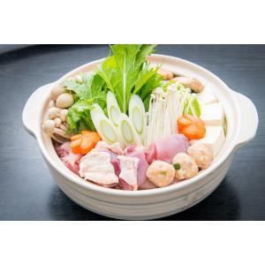 天草大王鍋|amakusakaisen-amarei