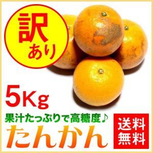 奄美大島 訳あり たんかん タンカン みかん ご家庭用 5kg|amami-osima