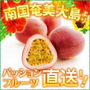 パッションフルーツ2kg 贈答用 パッションフルーツ2kg 時計草 奄美大島