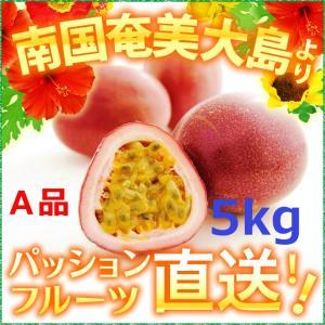 パッションフルーツ5kg 贈答用 奄美大島 パッションフルーツ5kg 時計草