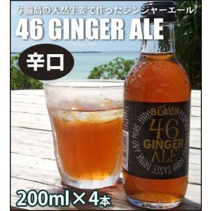 与論島の天然生姜で作ったジンジャーエール「46GINGER ALE」(辛口 200ml×4本セット) amami