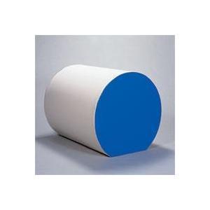FLAP 仲條 リズム運動用マット 径100cm FLP1120 体育 体操器具リズム運動用マット|amatashop