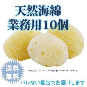 業務用 天然海綿スポンジ 10個セット 乾燥肌 赤ちゃん 天然素材 柔らかい やわらかい ボディブラシ 送料無料の画像