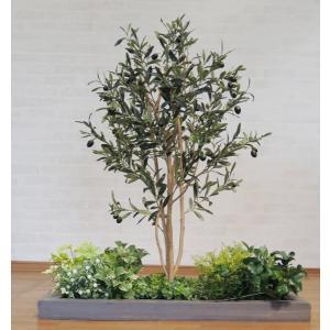 オリーブとガーデニング付きのセット商品です(造花/人工観葉植物)  実なりを楽しんでもらえる樹木と、...