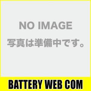 12N5.5-3B ACデルコ バイク バッテリー Delco 12N5.5-3B 互換 純正品|amcom