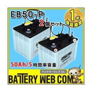 EB50 ポール端子 2個セット テーパー HITACHI バッテリー 50Ah/5時間率容量 日立化成 日本製 国産 ディープサイクル エレベータ 蓄電池 太陽光 ソーラー 発電 用|amcom