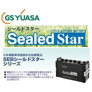 SEB150 L型端子 シールド GSユアサ YUASA EB サイクル バッテリー 蓄電池 エレベータ ジーエスユアサ GSYUASA|amcom
