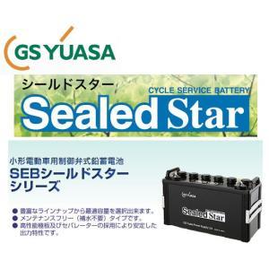 SEB50 L型端子 シールドEB GSユアサ バッテリー YUASA サイクル バッテリー 蓄電池 エレベータ ジーエスユアサ GSYUASA|amcom