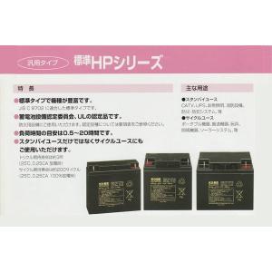日本製 HP24-12 日立 新神戸 JIS規格 小型制御弁式鉛蓄電池 バッテリー 日立化成 国産 エレベータ|amcom