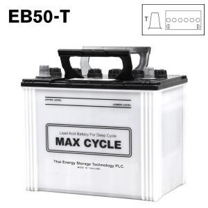 EB50-T ポール端子 日立化成 ディープサイクル バッテリー 蓄電池 純正 送料無料 (一部地域送料加算)|amcom