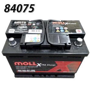モルバッテリー MOLL 欧州車用バッテリー 830-75 ...