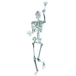 骸骨 デコレーション ハロウィン 150cm amecos