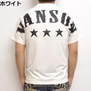 当店別注 バンソン VANSON ABV-901 ドライ 半袖 Tシャツ レギュラータイプ 吸汗速乾  抗菌防臭 UVカット|americanbass|08
