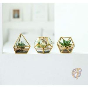 【3個セット】プランター ディスプレイボックス 多肉植物 Gold americapro
